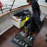 Diving Services Hoonah Alaska